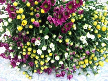 お墓参り花