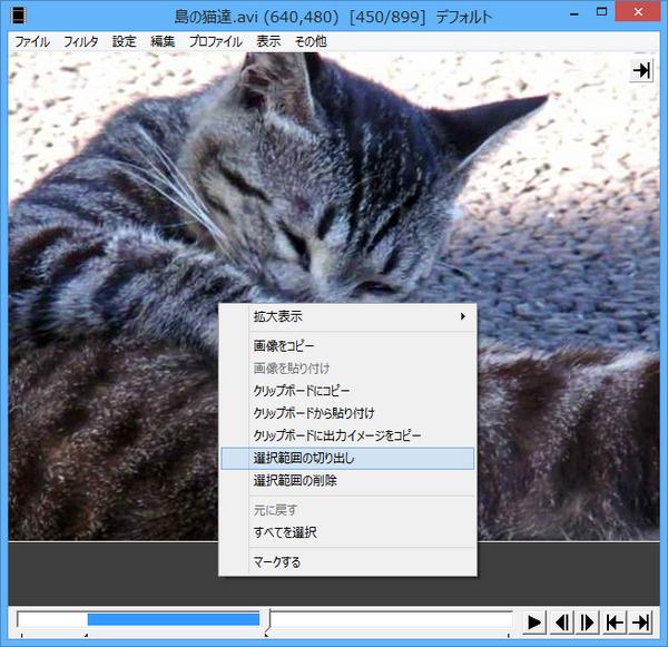 AviUtlで動画のリサイズをする