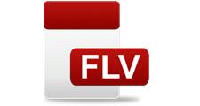 flvの変換やflvなどの動画の編集をするには?
