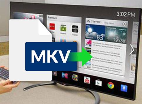 MKV動画をSony TVで再生する方法