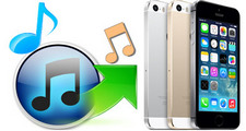iTunesからiPhoneに曲を入れる方法