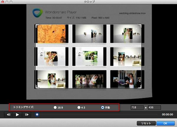 動画を部分拡大する方法