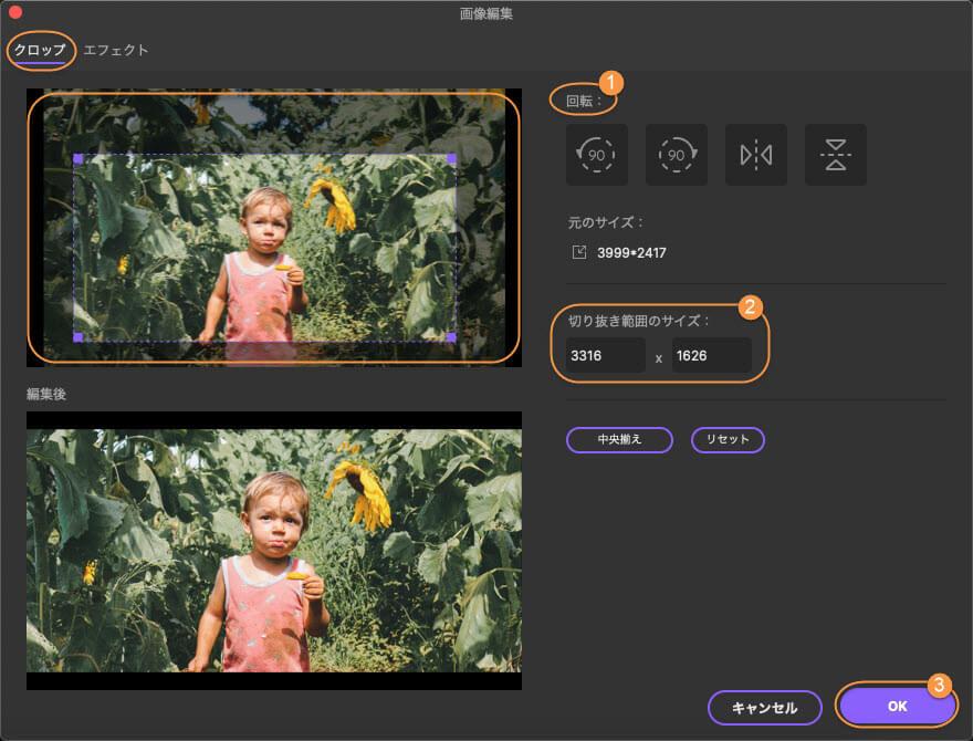 crop image mac